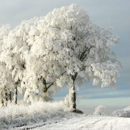 GC349 Freezing Hill