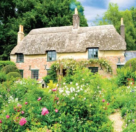 GC101 Summer Garden