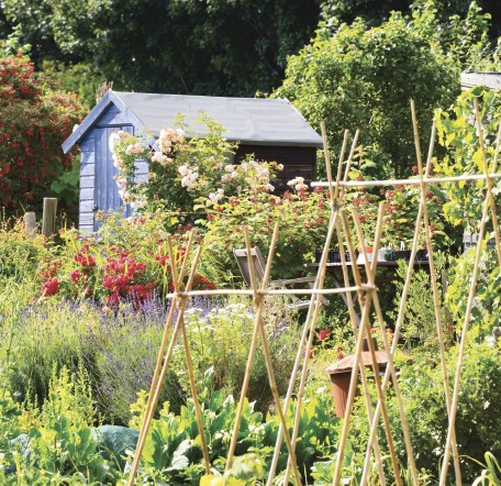 GC159 The Allotment